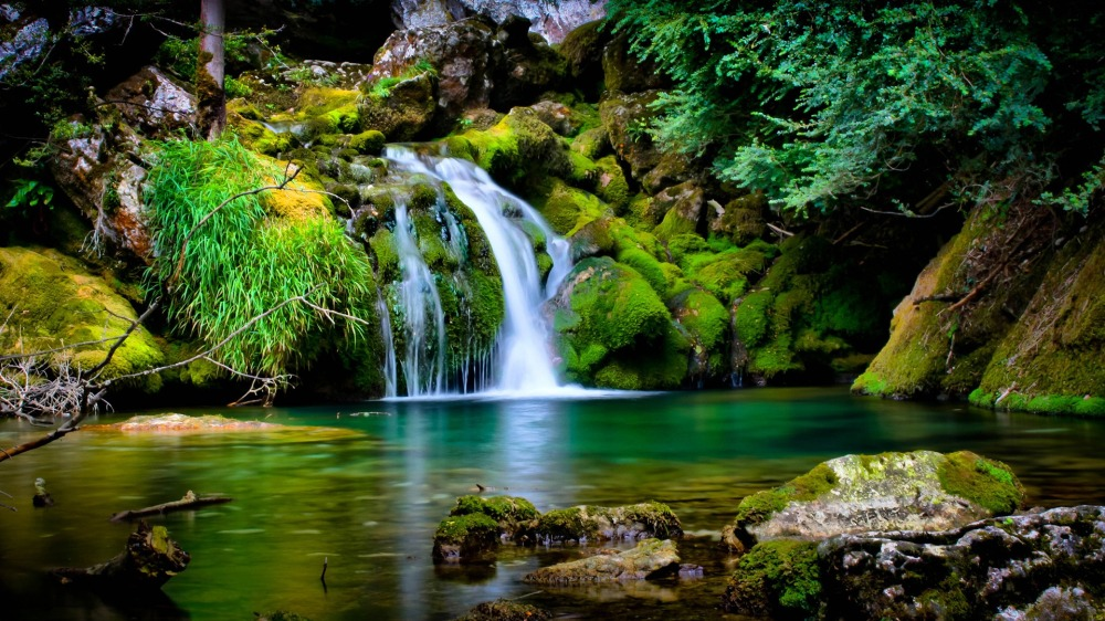 garden-of-eden-amazing-fresh-green-lanscape-nature-waterfall-wild
